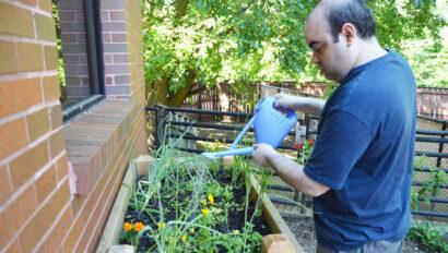 Man watering a garden.