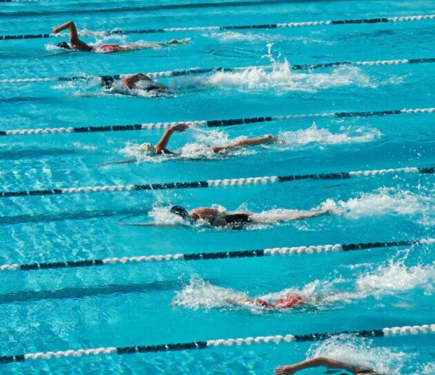 People swimming in individual pool lanes.